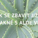 Aloe vera: Jak ji používat na jizvy po akné